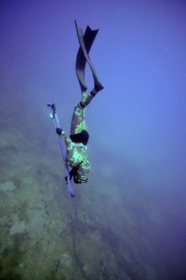 guided spearfishing adventures