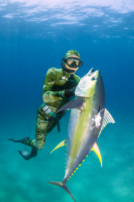 spearfishing mozambique