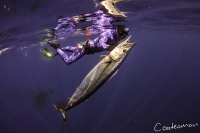 spearfishing wahoo mozambique
