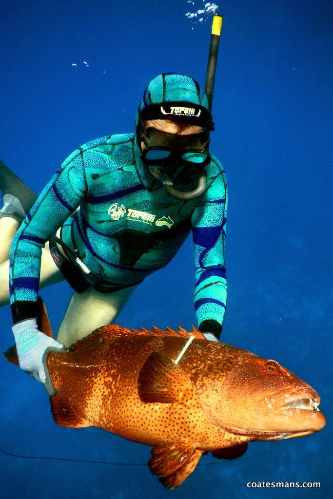 Greg Pickering hunting the Madagascan reef.
